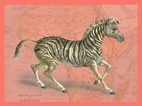 African Animals on Coral III Fine-Art Print
