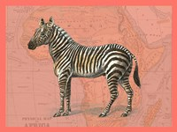 African Animals on Coral IV Fine-Art Print