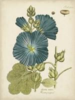 Eloquent Botanical IV Fine-Art Print