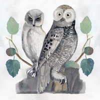 Traditional Owls I Fine-Art Print