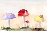 Faerie Mushrooms II Fine-Art Print