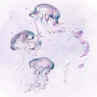 Underwater Halcyon II Fine-Art Print