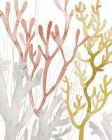 Desert Coral I Fine-Art Print