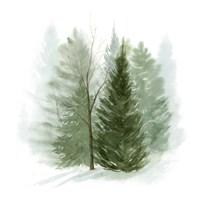 Walk in the Woods I Fine-Art Print