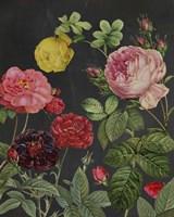 Redoute's Bouquet II Fine-Art Print
