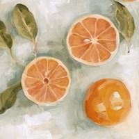 Fresh Citrus II Fine-Art Print
