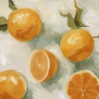 Fresh Citrus IV Fine-Art Print