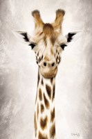 Geri the Giraffe Up Close Fine-Art Print