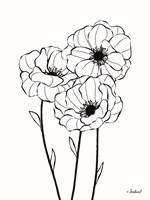 Poppies in Bloom Fine-Art Print