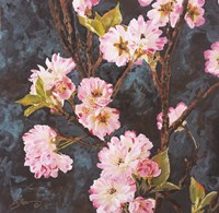 Cherry Blossoms Fine-Art Print