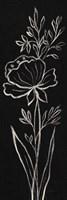 Black Floral III Crop Fine-Art Print