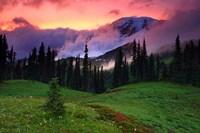 Mt. Rainier, WA Fine-Art Print