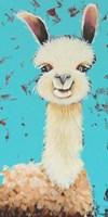 Llama Sue Fine-Art Print