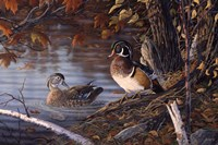 Autumn Companions Fine-Art Print