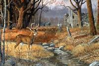 Forgotten Valley Fine-Art Print