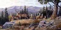 High Ridge Crossing Fine-Art Print