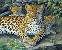 Leopards' Lair Fine-Art Print