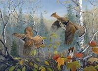 October Wings Fine-Art Print
