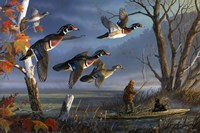 Woodies On The Wing Fine-Art Print