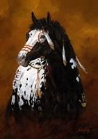 Sioux War Pony Fine-Art Print