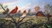 Meadow Retreat Fine-Art Print