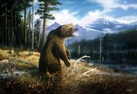 Ghost Grizzly Fine-Art Print