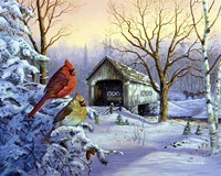 Snowy Haven Fine-Art Print