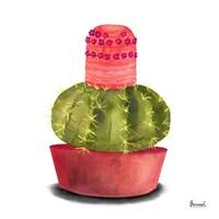 Cactus Flowers IV Fine-Art Print