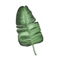Leaves of the Tropics I Fine-Art Print