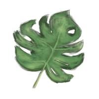 Leaves of the Tropics II Fine-Art Print