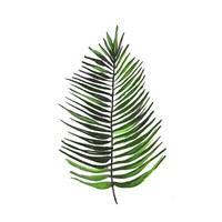 Leaves of the Tropics IV Fine-Art Print