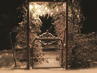 Snowy Garden Gate Fine-Art Print