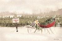 Red Sleigh at Tree Farm Fine-Art Print