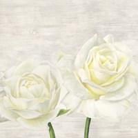 Classic Roses I Fine-Art Print