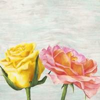 Funky Roses I Fine-Art Print