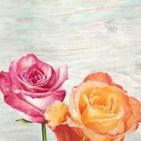 Funky Roses II Fine-Art Print