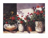 Pots of Geraniums Fine-Art Print