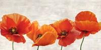 Bright Poppies Fine-Art Print