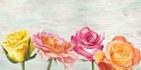 Funky Roses Fine-Art Print