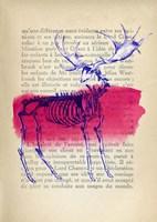 Memories of the Wild III Fine-Art Print