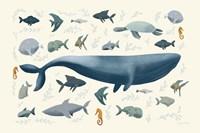 Ocean Life Fine-Art Print
