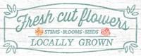 Pastel Flower Market VI Fine-Art Print