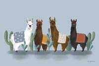 Delightful Alpacas V Fine-Art Print