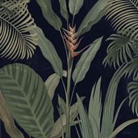Dramatic Tropical II Light Fine-Art Print