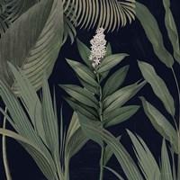 Dramatic Tropical I Light Fine-Art Print