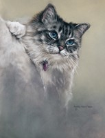 Sapphires and Whiskers Fine-Art Print