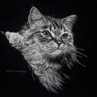 Kitten II Fine-Art Print