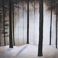 Winter Solace Fine-Art Print