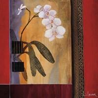 Orchid Lines I Fine-Art Print