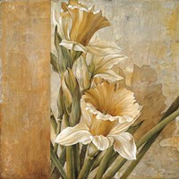 Champagne Daffodils II Fine-Art Print